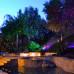 Уличная лазерная подсветка Garden Flower RGB