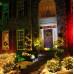Уличная лазерная подсветка Garden RG